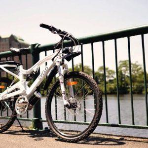 Bicicleta electrică Evelo
