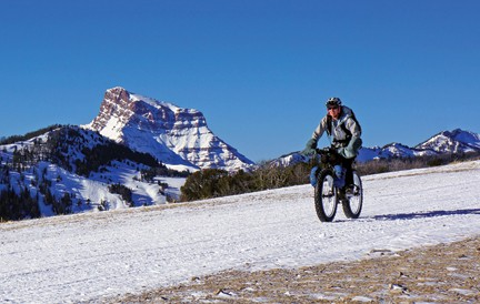 Cu bicicleta in padure iarna