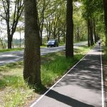 Pista izolată pentru bicicletă