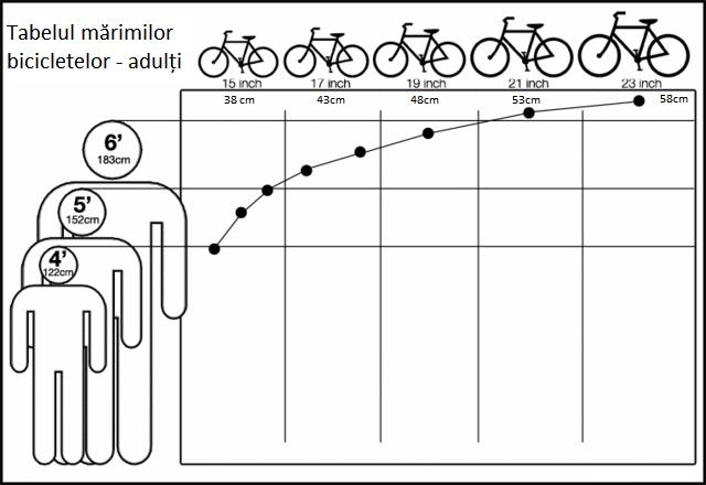 Tabelul mărimilor bicicletelor pentru adulți
