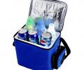 Cum să alegeți o geantă frigorifică